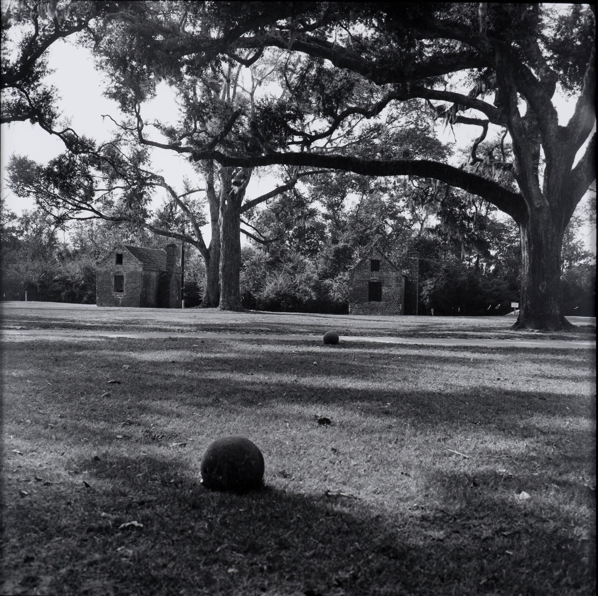 Untitled, from the Sea Island Series, (Boone Plantation)